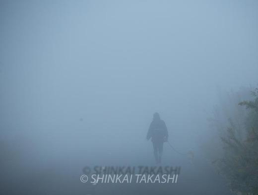 霧の朝-0951.jpg